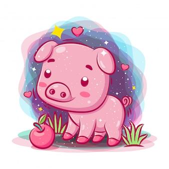 Porco bebê brincar no jardim com maçã