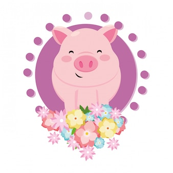 Porco com flor