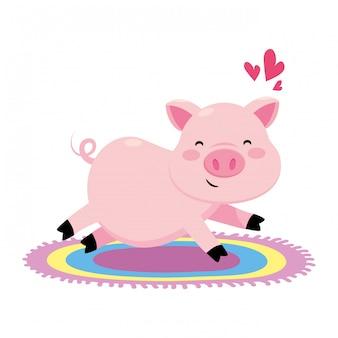 Porco com tapete colorido