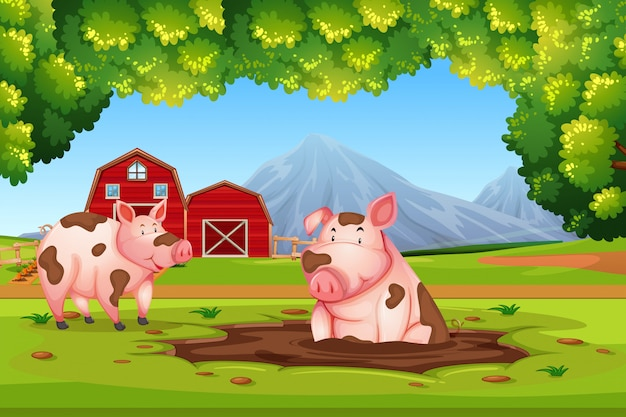 Porco na fazenda de natureza