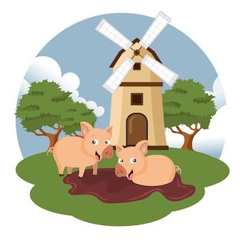 Porcos ao lado do moinho de vento