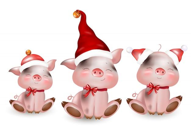 Porquinhos fofos de natal com chapéus de papai noel