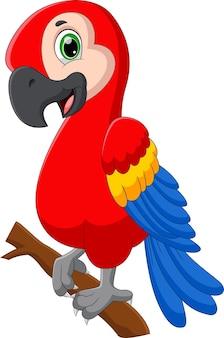 Pose de papagaio fofo desenho animado