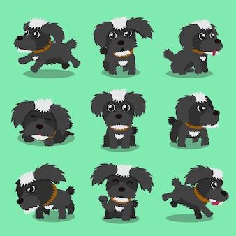 Poses de cão maltês preto personagem dos desenhos animados