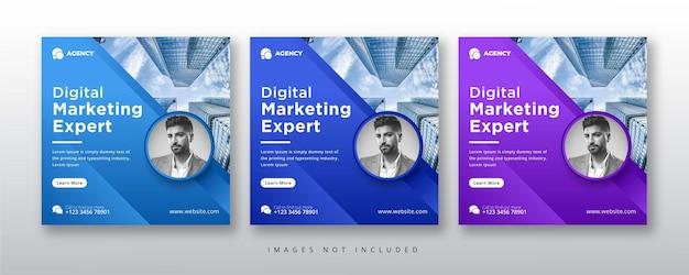 Postagem de especialista em marketing digital e modelo de banner
