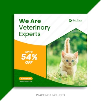 Postagem em mídia social para animais de estimação ou postagem no instagram sobre cuidados veterinários para animais de estimação ou novo folheto quadrado com banner do facebook