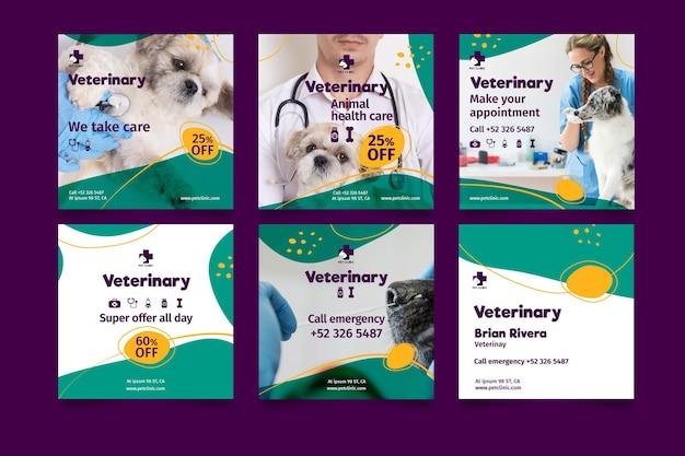 Postagens veterinárias nas redes sociais