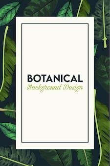 Pôster botânico com folhas em moldura retangular