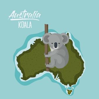 Poster koala in australia map