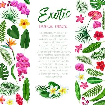 Pôster tropical. página de modelo de paraíso exótico