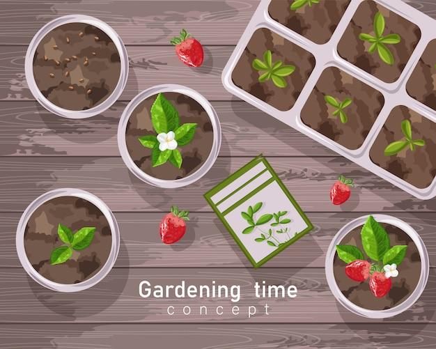 Pote de jardinagem primavera com morangos, flores e folhas de chá crescendo