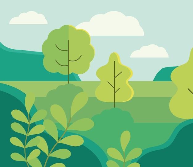 Prado de árvores florestais