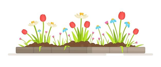 Prado de flores. ilustração de mudas de flores. cama com arbustos de baga na primavera. primavera, horta, mudas.