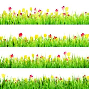Prado primavera em branco