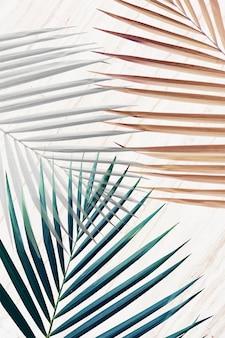 Prata com folhas de palmeira verdes e marrons com fundo estampado