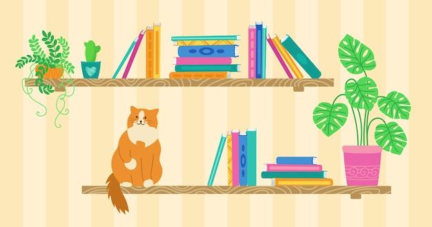Prateleira com livro de desenho animado, gato e plantas caseiras. biblioteca de estantes de madeira. pilha plana da coleção de livros. estudo do interior da parede, estante e estante da escola. no fundo branco