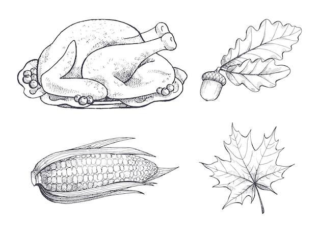 Prato de peru e maple folhas esboços conjunto