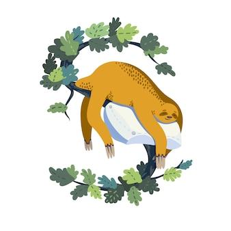 Preguiça bonito dormindo no travesseiro nas folhas do ramo