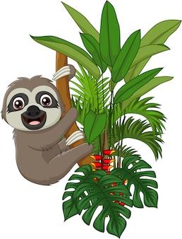 Preguiça de bebê fofo subindo no galho de árvore