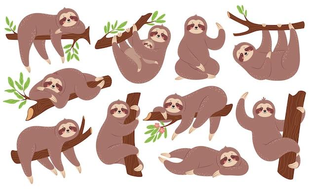 Preguiças engraçadas penduradas no galho escalando árvore dormindo. animal bebê fofo com conjunto de vetores de mãe