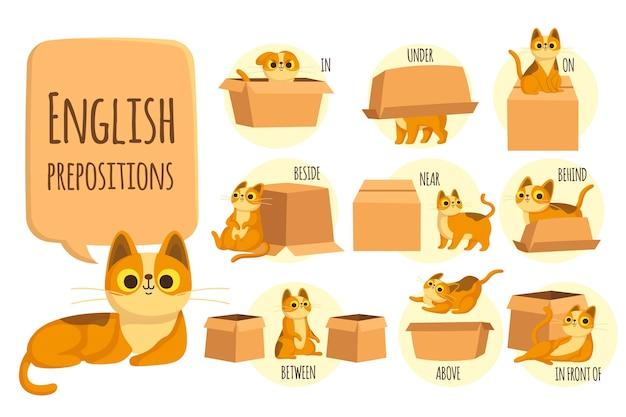Preposições inglesas com gato ilustrado