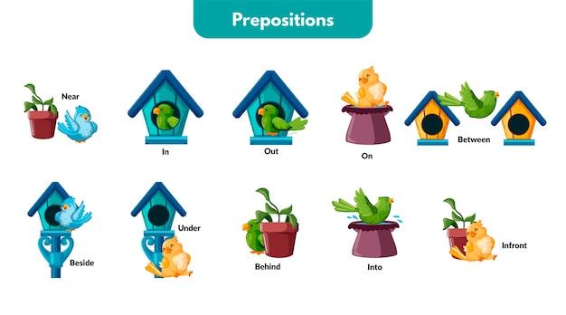 Preposições inglesas com pássaros ilustrados