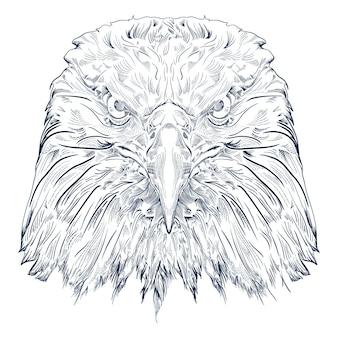 Preto e branco grava a águia isolada