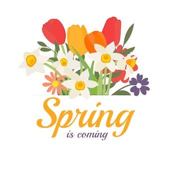 Primavera chegando fundo com buquê de flores da primavera, tulipas e narcisos