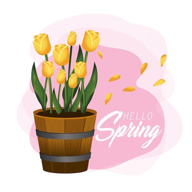 Primavera, com, exoticas, rosas, plantas, e, folhas, dentro, flowerpot