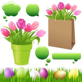 Primavera definida de grama com ovos, tulipas na panela e na embalagem e bolha de bate-papo