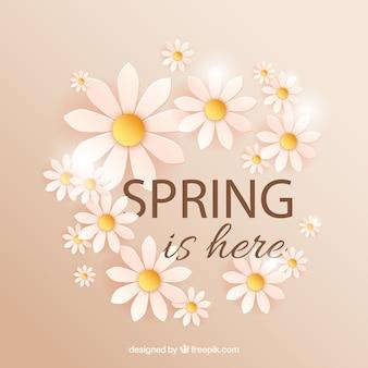 Primavera está aqui com margaridas