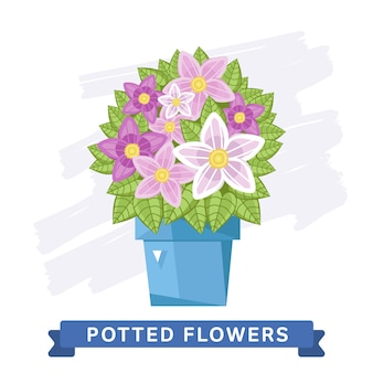 Primavera flores coloridas em vasos