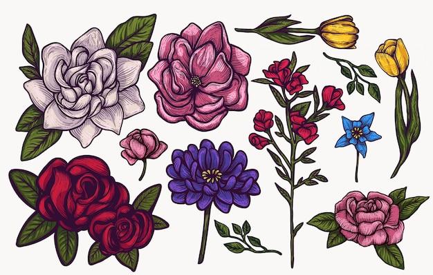 Primavera flores mão desenhada conjunto colorido clipart isolado