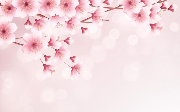 Primavera fundo bonito com primavera florescendo flores de cerejeira. filial de sakura com pétalas voando. ilustração vetorial eps10 Vetor Premium