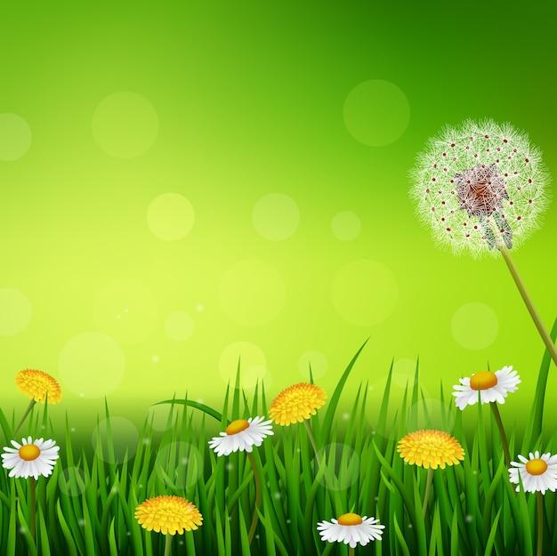 Primavera linda ou fundo de natureza de temporada de verão