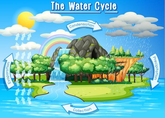 Processo do ciclo da água na terra - scientific