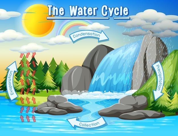 Processo do ciclo da água na terra