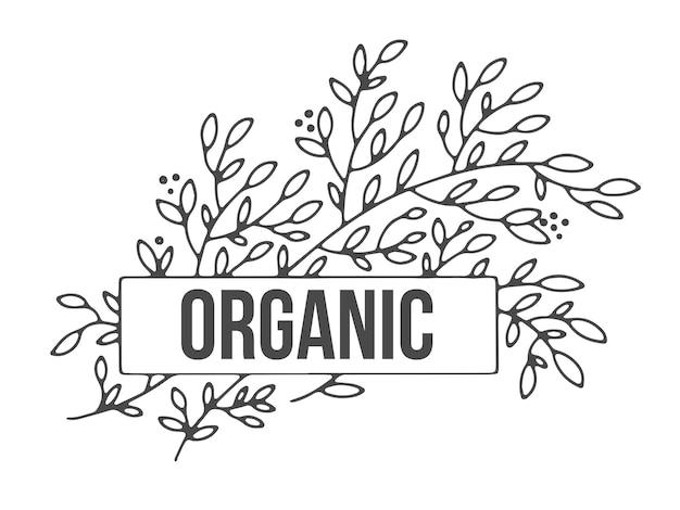 Produção natural e orgânica, produto ecologicamente correto de rótulo ecológico
