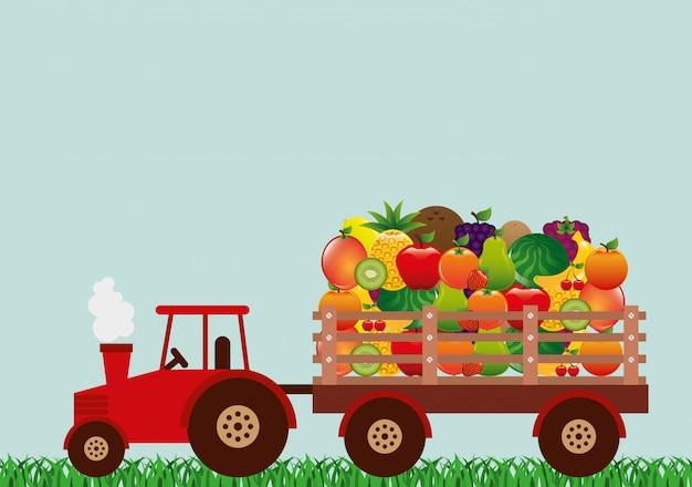 Produtos agrícolas frescos