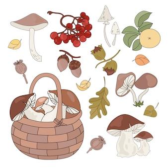 Produtos florestais outono temporada natureza