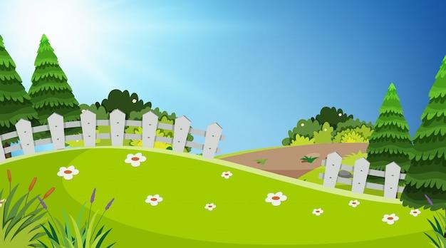 Projeto da paisagem com campo verde no parque