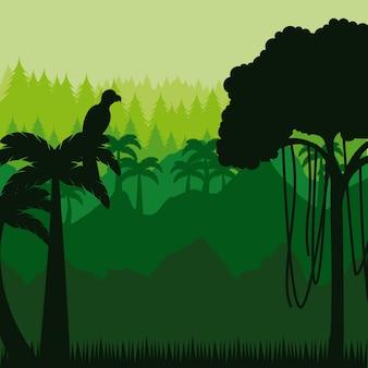 Projeto da selva brasileira