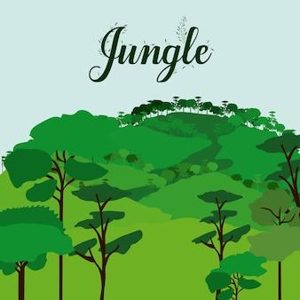 Projeto da selva