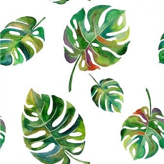 Projeto das folhas do padrão