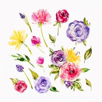 Projeto de coleção de flores em aquarela primavera