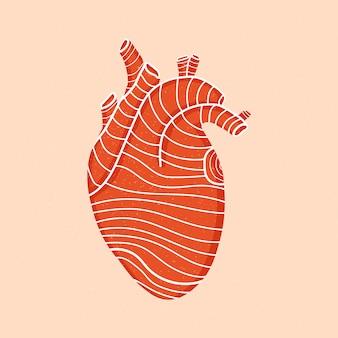 Projeto de coração humano vermelho isolado com linhas. o conceito de medicina. forma de coração com efeito texturizado.