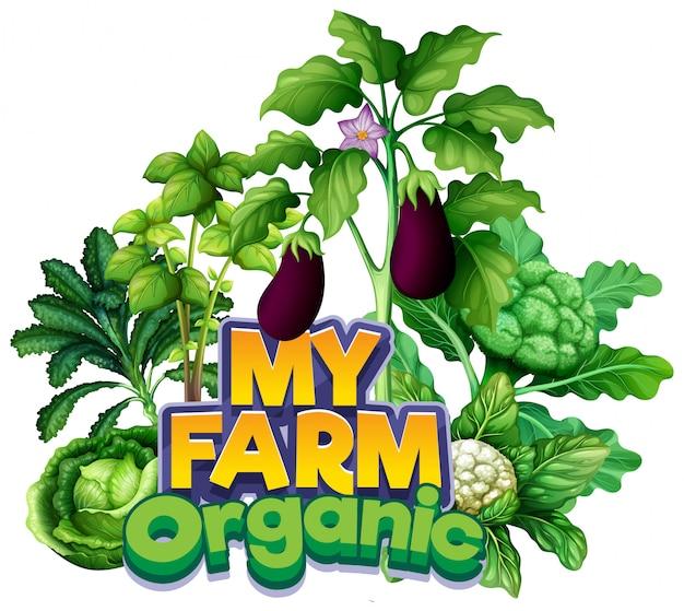 Projeto de fonte para a palavra minha fazenda com diferentes tipos de vegetais