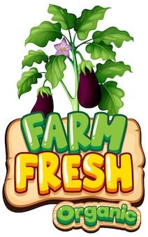 Projeto de fonte para fazenda fresca de palavra com berinjela fresca