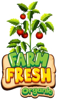 Projeto de fonte para fazenda fresca de palavra com tomates frescos