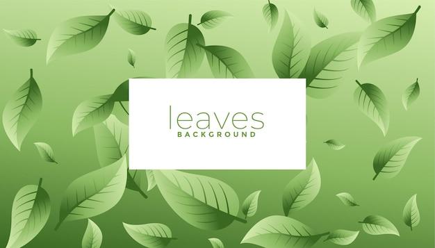 Projeto de fundo ecológico de folhas verdes